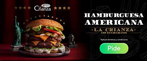 Hamburguesa Americana Free Delivery