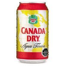 Canada Dry 220 ml
