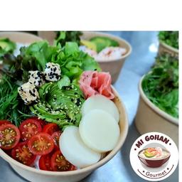 Mi Gohan Vegetariano