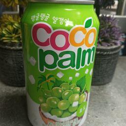 Coco Uva, Coco Palm