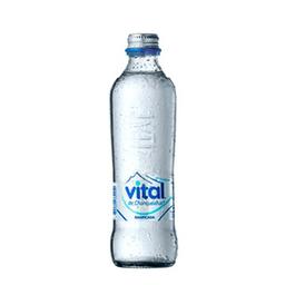 Agua Vital Gasificada 330 Cc