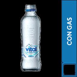 Agua Mineral  Vital Con Gas