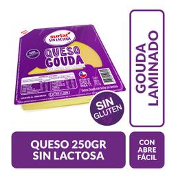 Queso Gouda Surlat S/Lactosa 250 Gr
