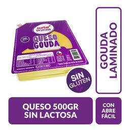 Queso Gouda Surlat S/Lactosa 500 Gr