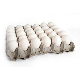 Huevo Extra Blanco Unimarc 20 Un