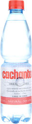 Bebestibles Cachantun S/Gas  500Ml.