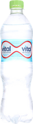 Bebestibles Vital S/Gas 600Ml