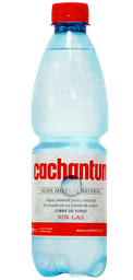 Agua Mineral Cachantún 500 ml