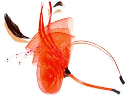 Cintillo Redondo Pluma Rojo