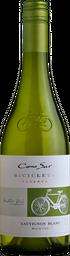 Bicicleta Sauvignon Blanc 2017 Botella 750 cc.