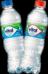 Promo: 2x Agua Vital Variedades 600ml