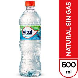 Vital Sin Gas Agua Mineral 600mL