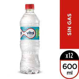Agua Mineral Vital Sin Gas 600ml