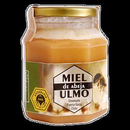 Miel de Ulmo 250 gr