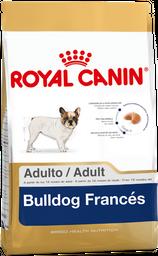 Royal Canin Adulto Bulldog Francés