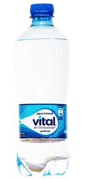 Agua Mineral 330cc