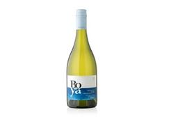 Sauvignon Blanc Garcés Silva - Boya