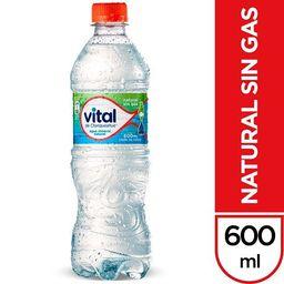Agua Vital sin Gas 600 ml