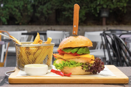 Sabana Burger + Papas Fritas