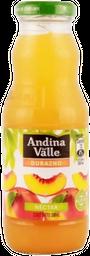 Nectar Durazno Andina Jugo 300cc