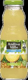 Nectar Piña Andina Jugo 300cc