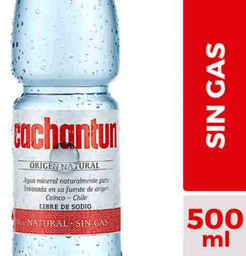 Agua Mineral Cachantun S/G 500cc