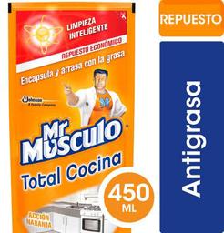 Limpiador Naranjo Recar 450cc Mr Musculo