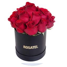 Sombrerera Negra 15 Rosas