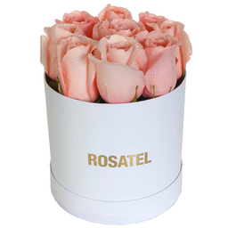 Sombrerera Blanca con 9 Rosas Rosadas