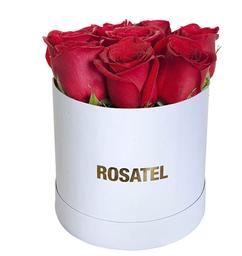 Sombrerera Blanca Rosas 9 Rojas