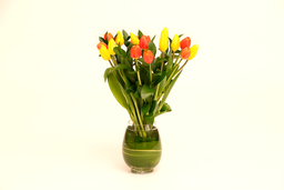 Armonía en tulipanes