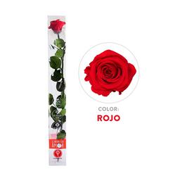 Rosa Preservada Acrilica Roja Tallo Largo