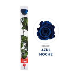 Rosa Preservada Acrilica Azul Tallo Largo