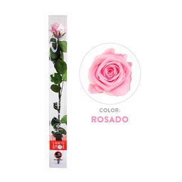 Rosa Preservada Acrílica Rosada Tallo Largo