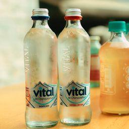 Agua Vital Sin Gas 500 ml
