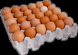 Bandeja 30 Huevos Color