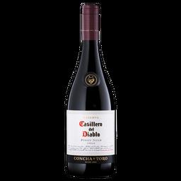 Casillero Del Diablo Vino 14 G Pinot Noir