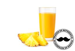 Jugo de Piña (Andina) 300 ml