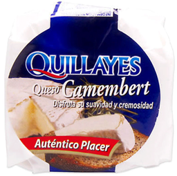 Queso Camembert Caja Quillayes 100g