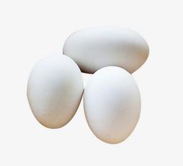Huevo de Campo