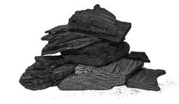 Carbon de Espino 1 U