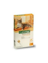 Tratamiento Advantage Antipulgas Para Gatos de Menos de 4 Kg