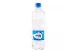 Agua Mineral con Gas 500cc