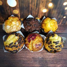 Promo 6 Muffins