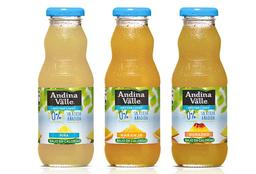 Andina Durazno 300 ml