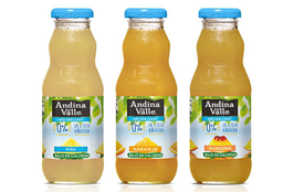 Andina Naranja 300 ml