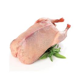 Pato (2,6 kg aprox)