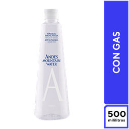 Andes Mountain Con Gas 500 ml