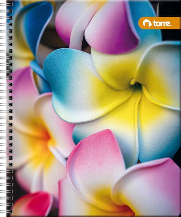 Cuaderno Universitario 100 7Mm Lito Torre