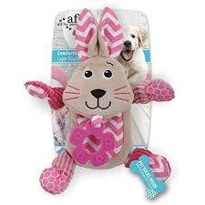 Hg Litte Buddy Comforting Bunny